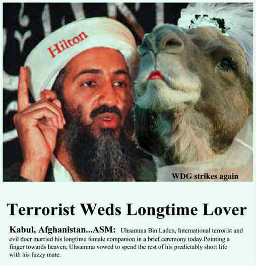 bin laden funny pics. Funny pictures of osama in