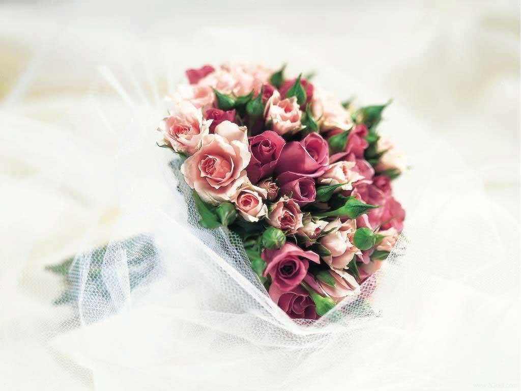 Fresh Flowers Desktop Wallpapers virtual pictures online # 25