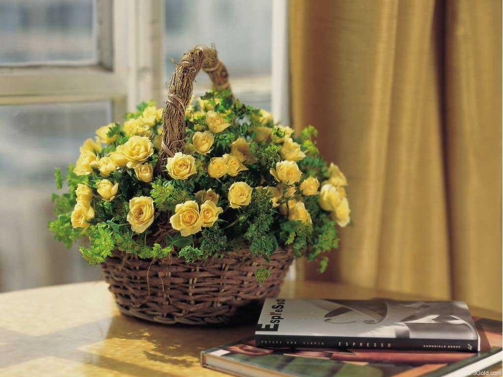 Fresh Flowers Desktop Wallpapers virtual pictures online # 28